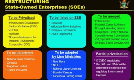 State Enterprises and Parastatals Reform Begins