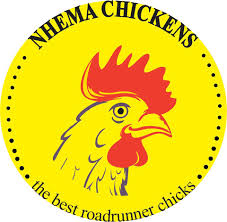 Nhema Chickens Profile