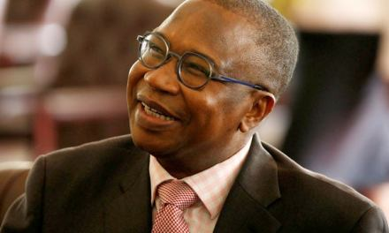 No more shock reforms: Mthuli Ncube