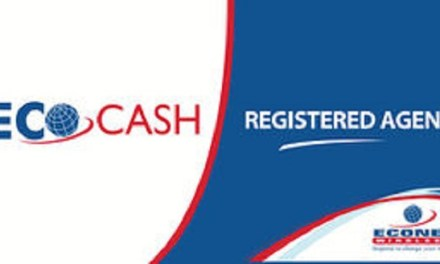 "Ecocash shuts down agents for ""selling"" cash"