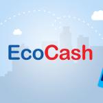 Public Reactions To Ecocash Zimbabwe's Tweet