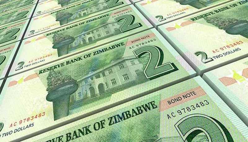 The Reserve Bank Of Zimbabwe's Plans To Avert The Cash Crisis