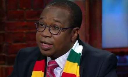 Inflation coming under control: Ncube
