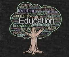 Is Academic Education Really The Answer?