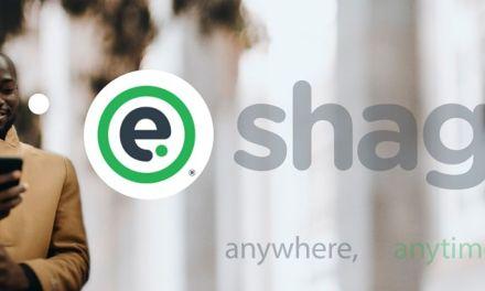 Eshagi – A New Startup By Munyaradzi Gwatidzo