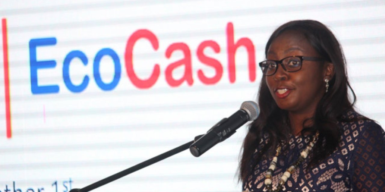 FIU goes after Ecocash and Cassava CEOs: Charges Explained