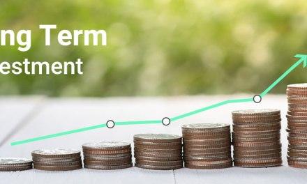 Long Term Investment Alternatives in Zimbabwe