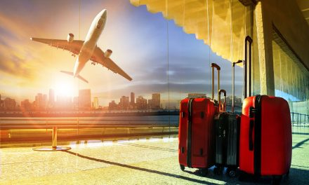 Tourism Business Ideas For Zimbabwe