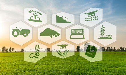 Business Prospects In The Sustainable Agriculture Industry