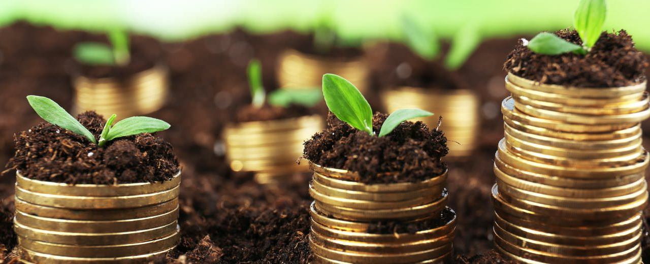 Quarter 3 Unit Trusts performance update: Are they worth your money?
