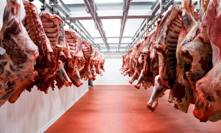How To Start An Abattoir Business