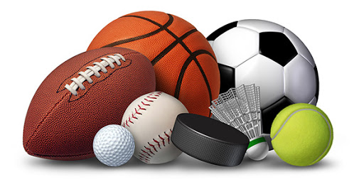 Profitable Sports Business Ideas