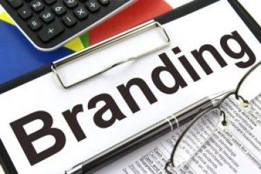 brand development-1