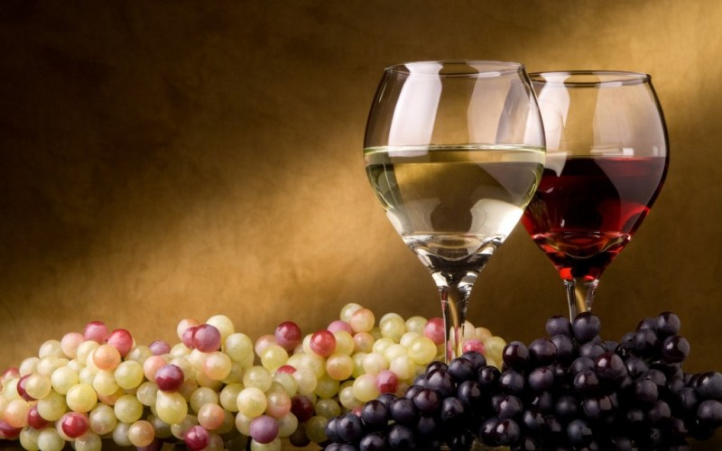 White-and-red-vines winegarden