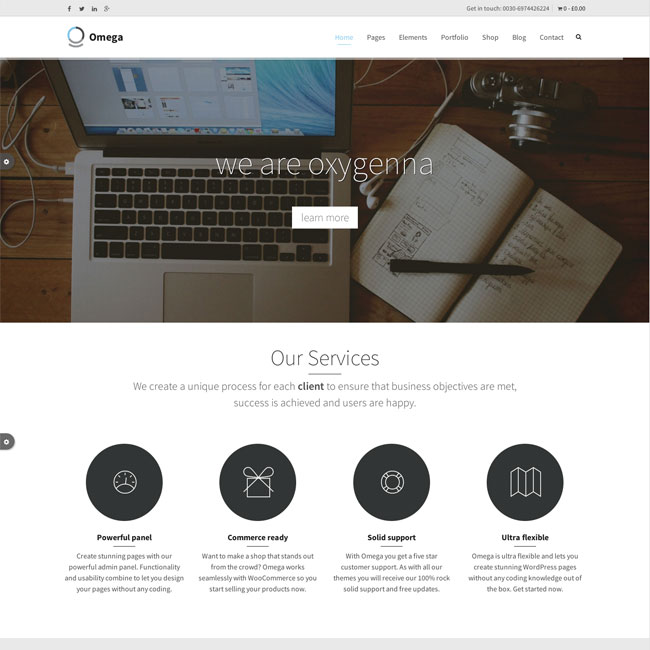 Omega business wordpress theme