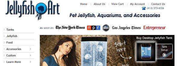 Jellyfish-Art-Startup-Featured-on-StartUpLift