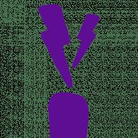 Purple carrot company icon
