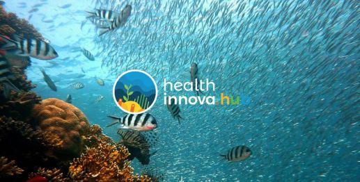 Health Innova HUB sem logo