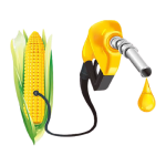 How To Start A Lucrative Biofuel Production Business In Nigeria: The Complete Guide