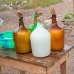 How To Start A Lucrative Palm Wine Production Business In Nigeria: The Complete Guide