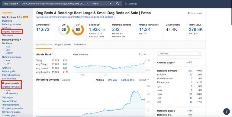 competitor site overview report in ahrefs site explorer