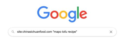 """google """"site:"""" search"""