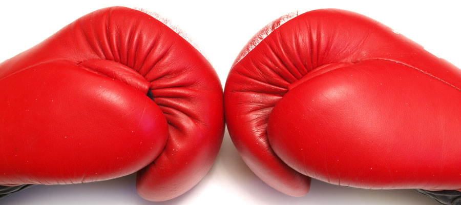 Fight (Bild: Shutterstock)