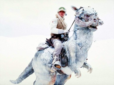 luke battle of hoth ESB