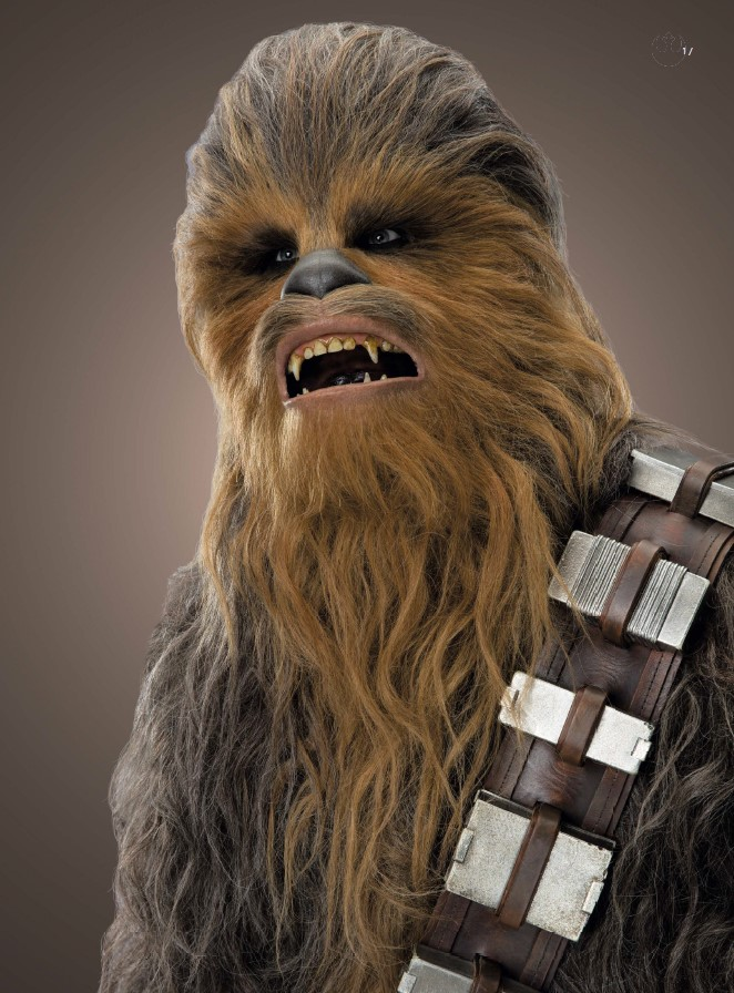 CHEWBACCA THE HEART OF A WARRIOR