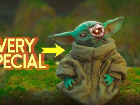 Why is Yoda's Race So Rare?