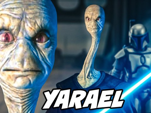 Top 10 Interesting Facts About Yarael Poof Jedi Master