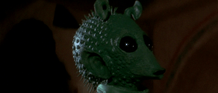 Catfish Species Officially Named After Greedo