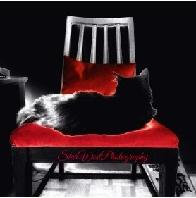 Maya's Red Chair T