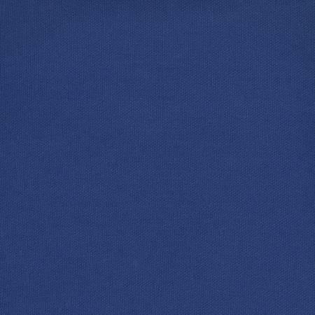 Royal Blue Duck Canvas
