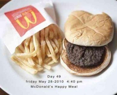 「マクドナルド 腐らない」の画像検索結果