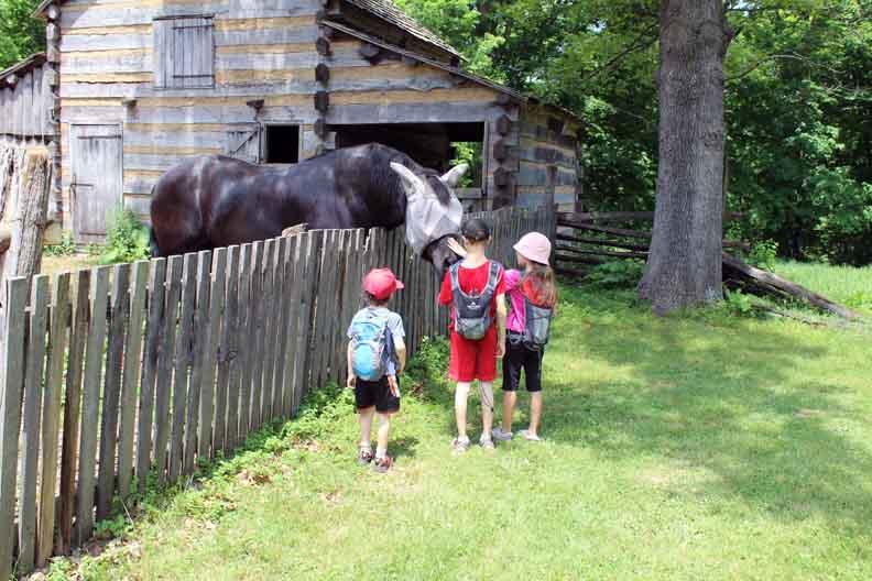 Three kids petting a horse.