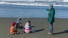 beach-schooling