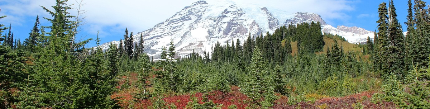 Mt. Rainier and Olympic National Parks