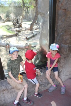 6 Tips to Save Money While Traveling America with Kids