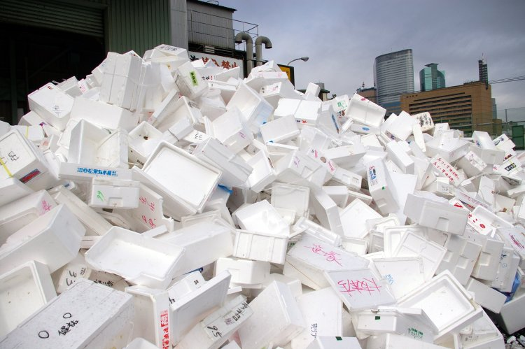 Legislative Update: Styrofoam Container Bans