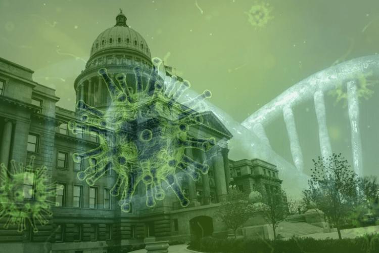 state legislatures covid-19