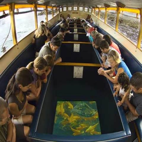 Glass bottom boat ride trip andman