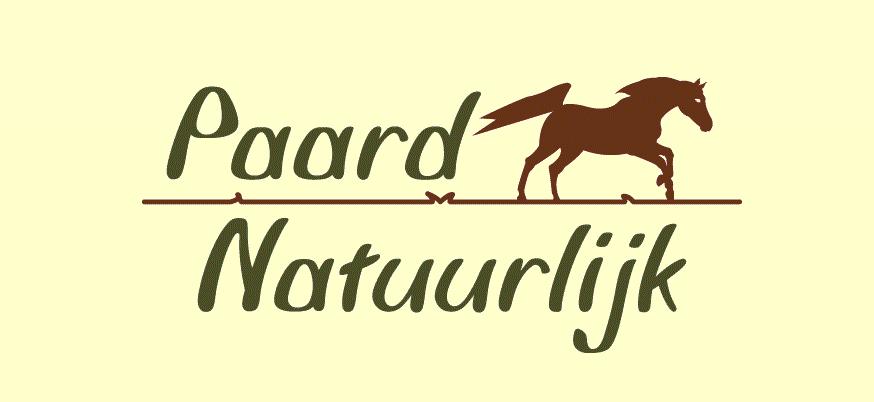 Algarve horse sanctuary
