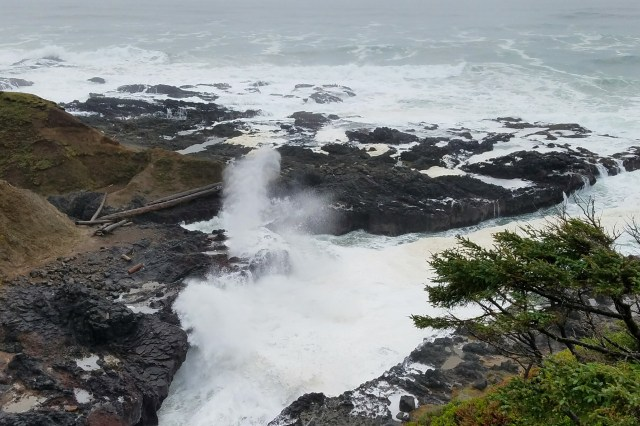 the spouting horn at cook's chasm
