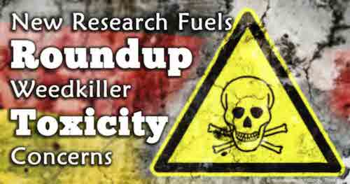 new-research-fuels-roundup-weedkiller-toxicity-concerns-fb