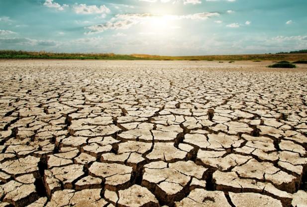 drought-617x416