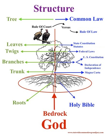Due Process of Common Law  Structure-Common-Law-