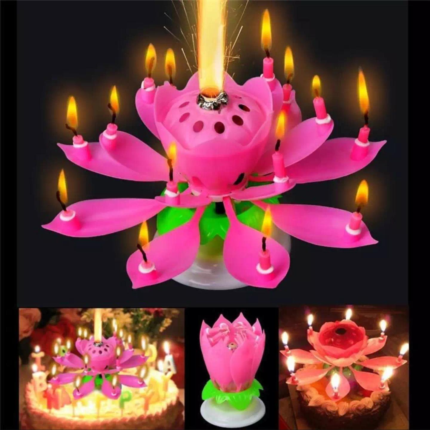 Musical Flower Birthday Cake Candle With Sound Buy Online At Best Prices In Pakistan Daraz Pk