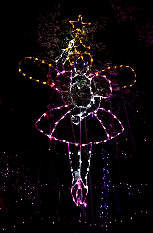 Cincinnati Zoo Festival Lights Hours