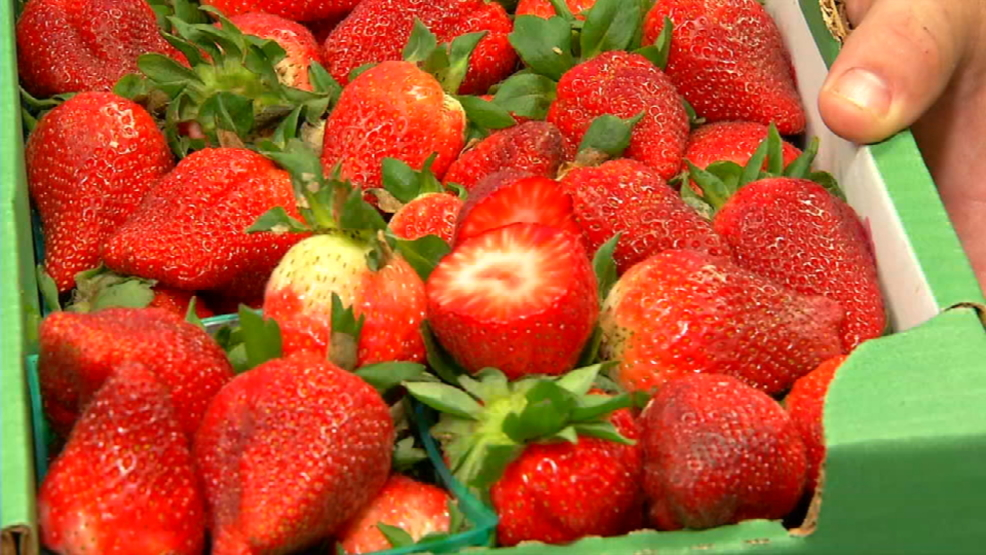 Poteet Strawberry Festival April 13 15 Kabb